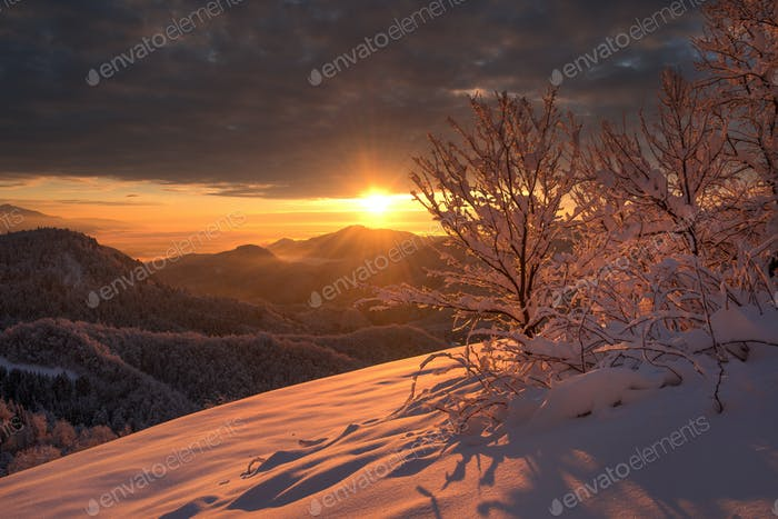 Dark winter sunrise with snow covered landscape
