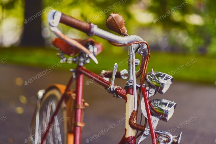 Retro bicycle in a park.