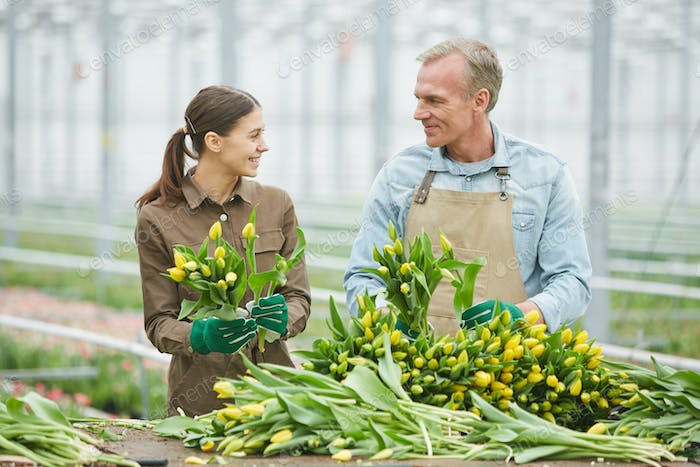 Cheerful Workers Sorting Flowers in Plantation