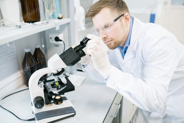 Male microbiologist studying food fibers under microscope
