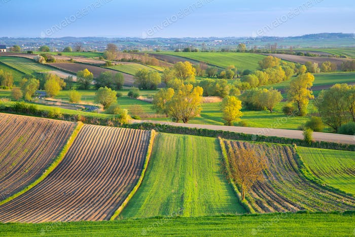 Poland, spring landscape with agricultural fields