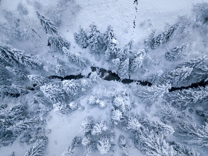 Top view of winter mountain river surrounded by trees and banks