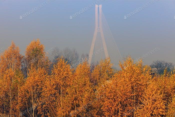 Tadeusz Mazowiecki Bridge in Rzeszow