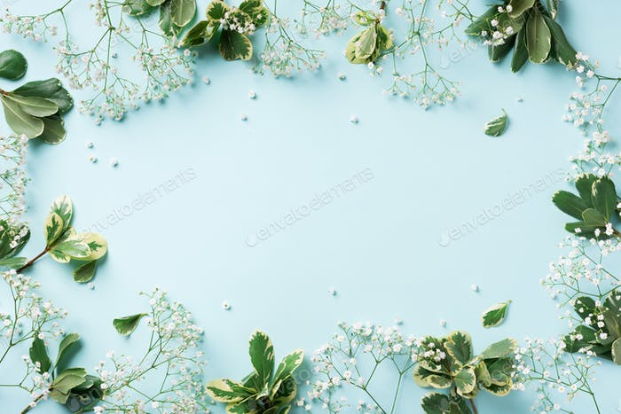 Small white gypsophila flowers on pastel blue background. Women's Day, Mother's Day