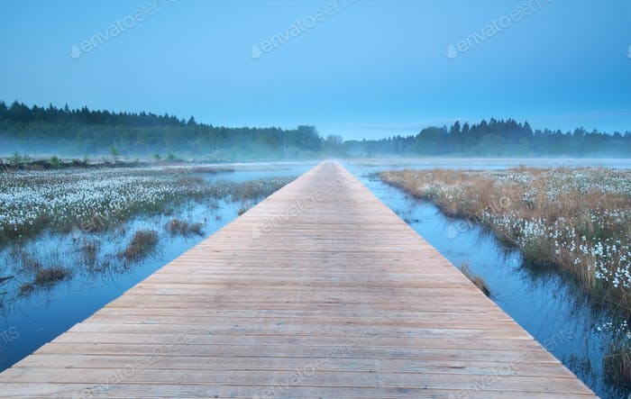 wooden road on misty swamp