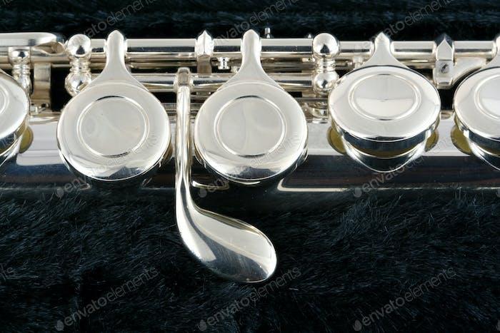 Flötenmakro in einem Fall