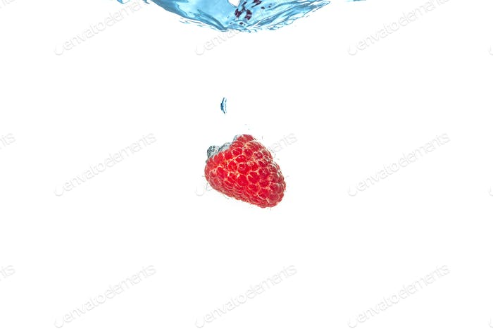 Raspberry splashing into crystal clear water with air bubbles sinking underwater