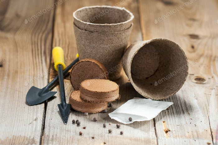 Garden tools, peat pots and seeds on wooden background