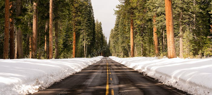 Long Panoramic Composition Open Road Two Lane Highway Winter Season