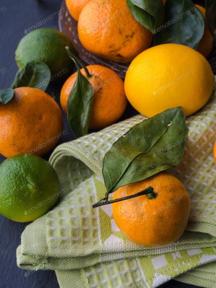 Mandarinen, Zitronen und Limetten
