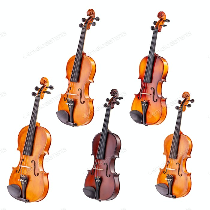 Set of classical violins