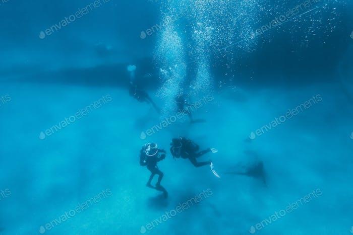 Scuba diving next to a shipwreck