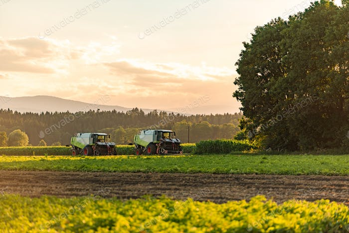 Large combine harvesters standing in agricultural field at summertime
