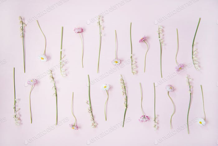Flat-lay of lily of the valley and daisy flowers over pastel pink background