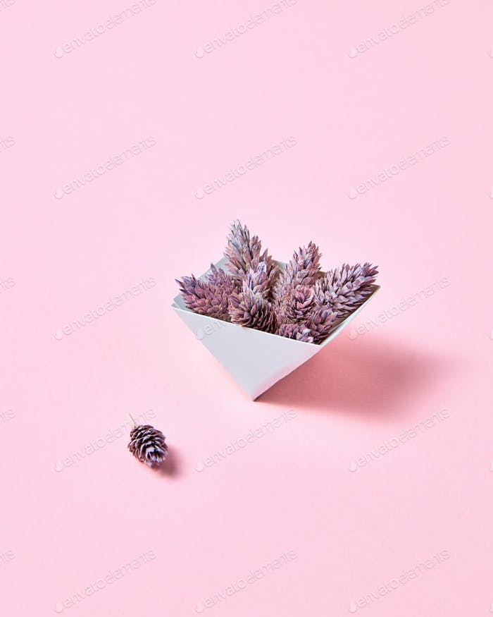 Pine cones in a cardboard triangular box on a pink background with copy space for text. Creative