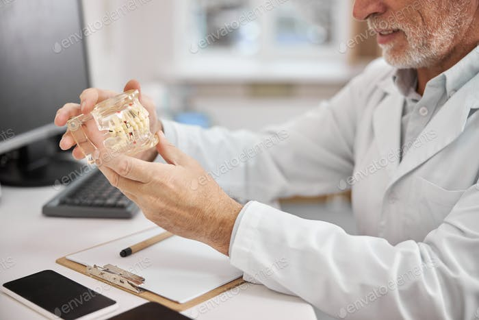 Experienced dentist looking at dental prosthetics in his office