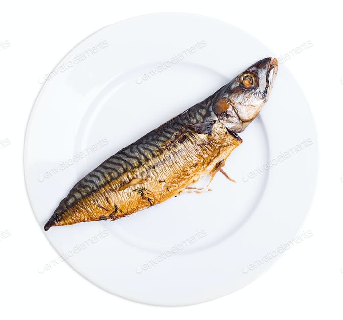 Delicious roasted mackerel fish.