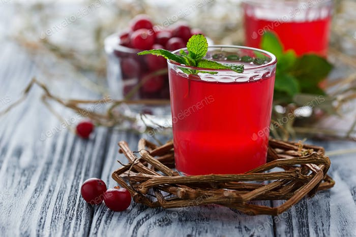 Gläser frisches Cranberry-Getränk