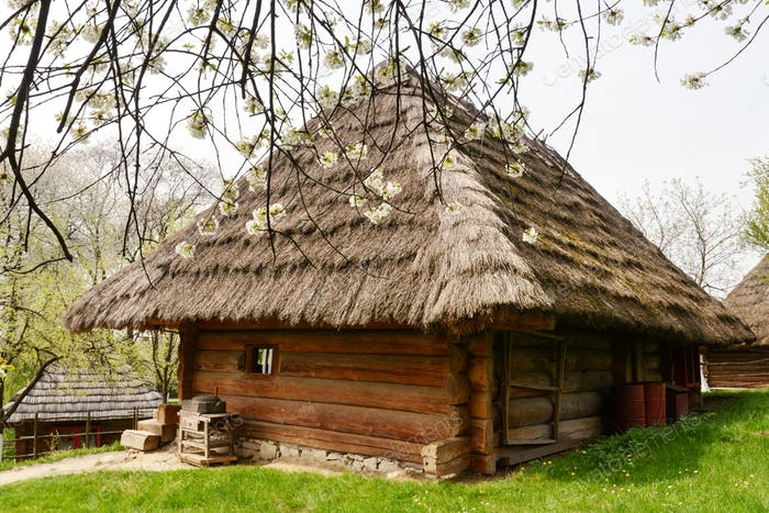 Old ukrainian house with straw