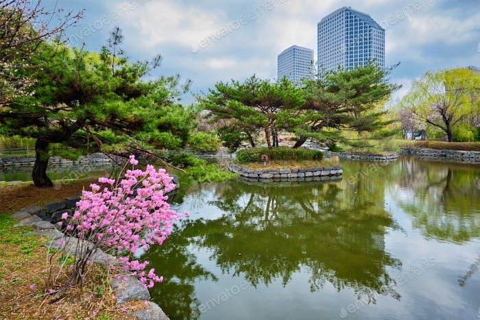 Yeouido Park in Seoul, Korea