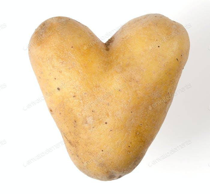 Heart shaped potato on white background