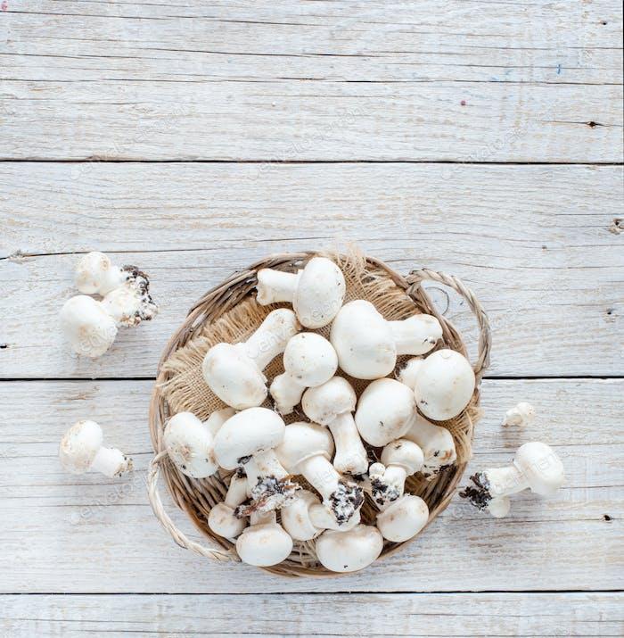 Champignon Pilze auf einem Tisch