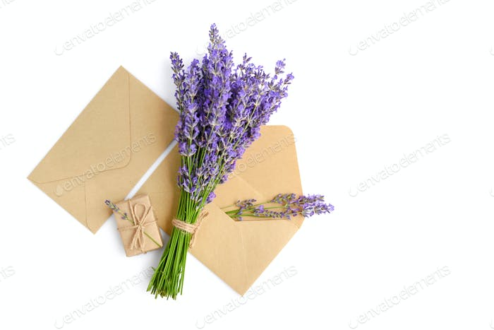 Fresh lavender flowers and envelopes on white background
