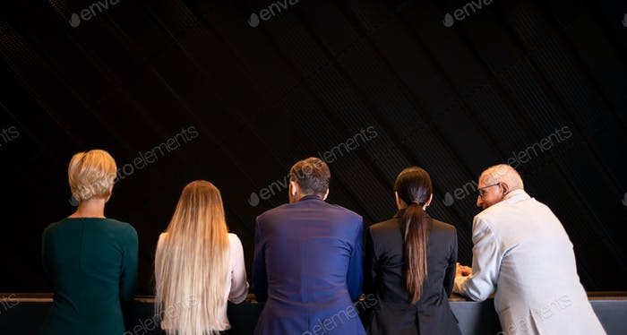 Group of business people at modern conference hall back view