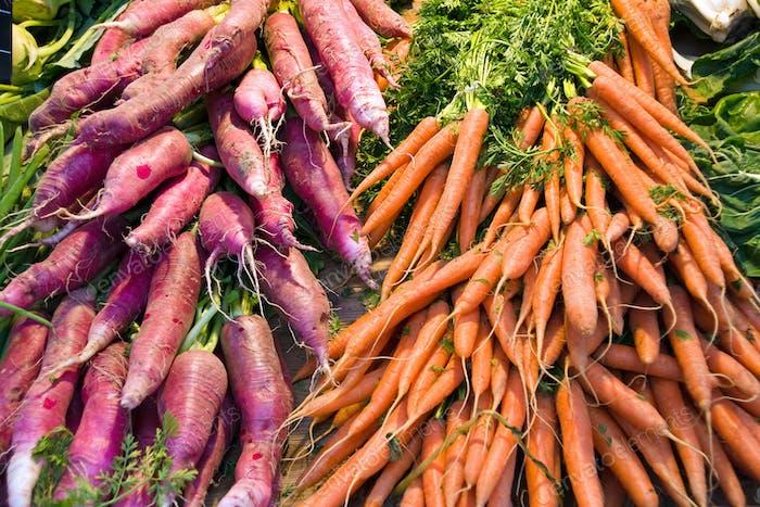 Rettich und Karotten
