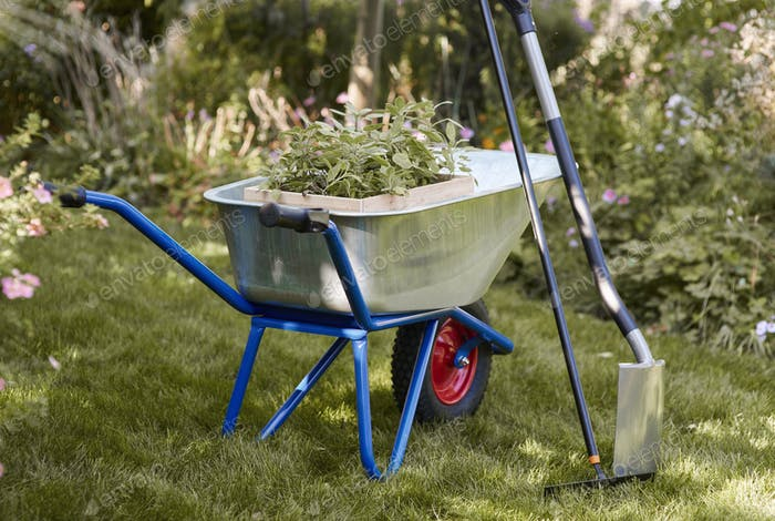Shot of wheelbarrow with seedling, rake and shovel