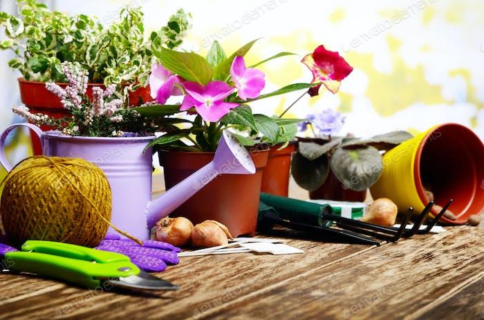 Gartenarbeit Hobby-Werkzeuge zum Pflanzen von Blumen auf Holzboden