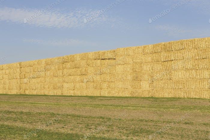 Stacked hay bales, Palouse, Washington
