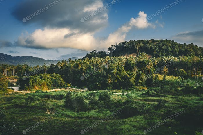 Landscape of tropical island . Horizontal image.