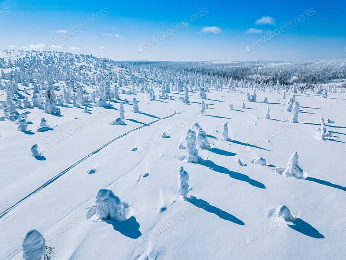 Aerial view of white winter forest with snow covered trees and rural road in Finland