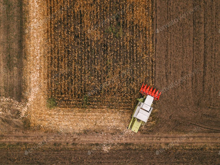 Aerial view of combine harvesting corn field