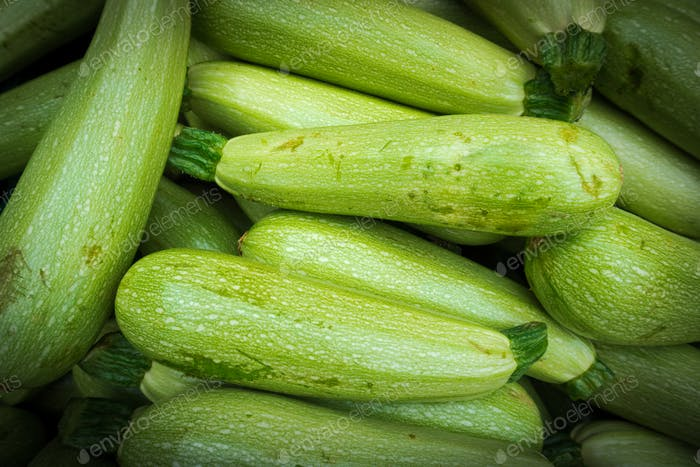 Fresh green zucchini. Zucchini background