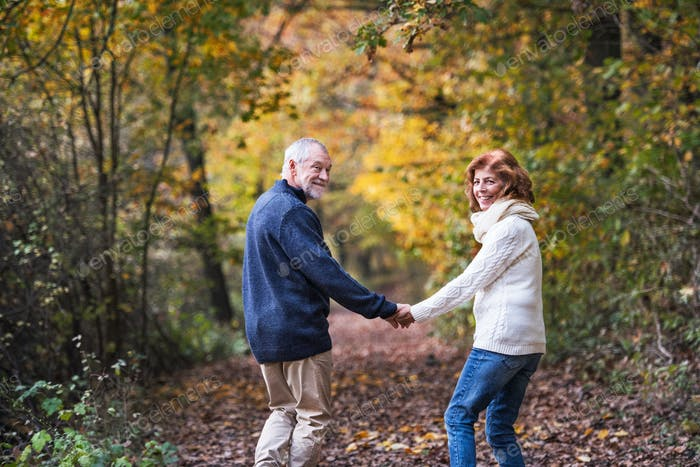 A senior couple walking in an autumn nature holding hands and looking back.