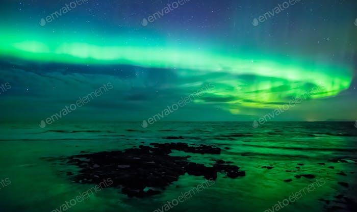 Aurora borealis über dem Meer, Gardur, Island