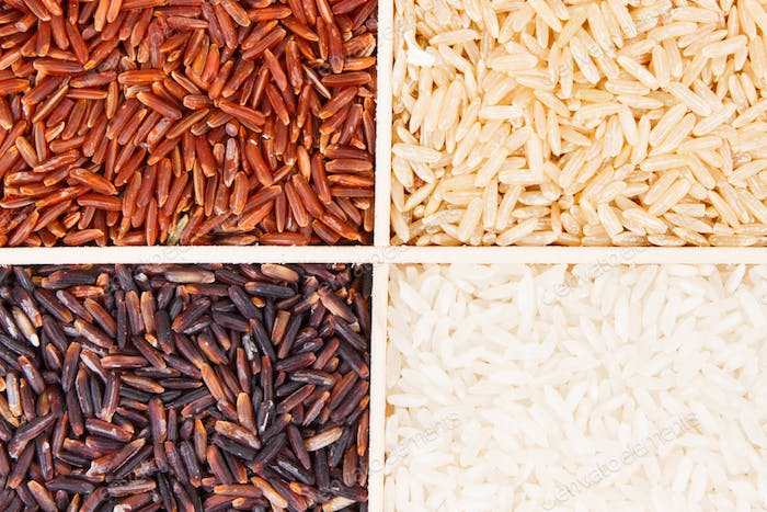Heap of white, brown, red and black rice, healthy nutrition concept