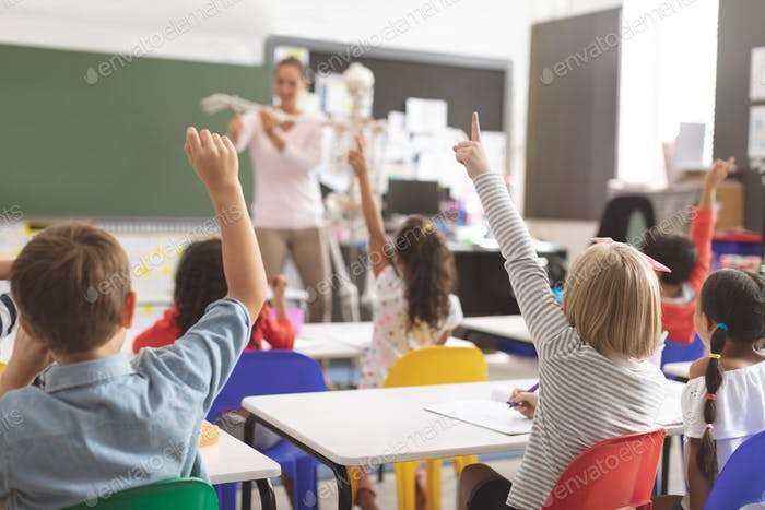 Kids raising hands while teacher explaining the functioning of human skeleton in classroom at school