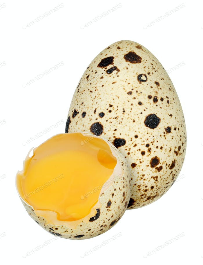 Quail eggs isolated