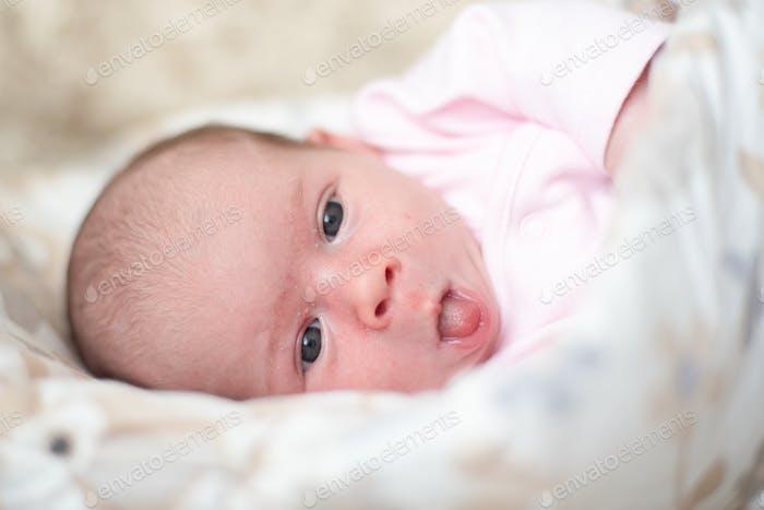 Neugeborenes liegt auf der Seite und schaut in die Kamera