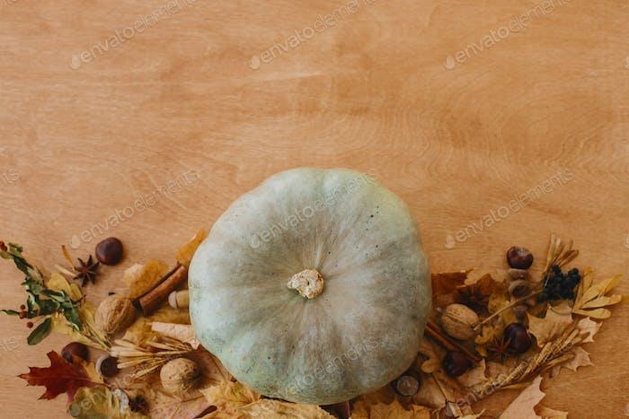 Stylish Pumpkin, autumn leaves, walnuts, chestnuts, acorns