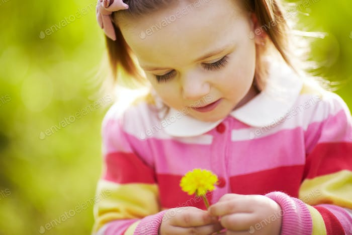 cute little girl with dandelion