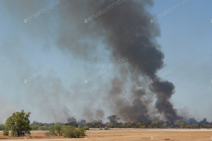 Smoke and fire in a bush area in The Gambia