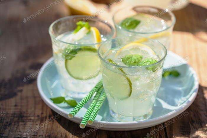 refrescante bebida de limonada con menta limón limón en el jardín