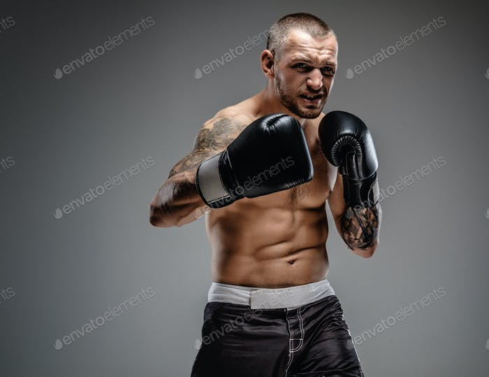 Tattooed fighter isolated on a grey background.