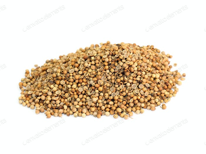 many coriander seeds
