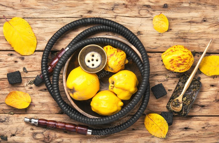 Nargile shisha with quince