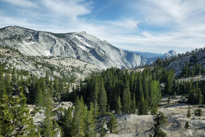 Half Dome seen from Tioga Pass